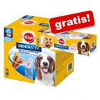 56 x Pedigree Dentastix / Dentastix Fresh + 1x Dentastix 2 x wöchentlich gratis!