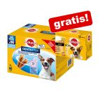 56 x Pedigree Dentastix (Fresh) + 12 x 100 g Pedigree Multipack in Soße