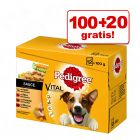 100 + 20 zdarma! 120 x 100 g Multipack Pedigree